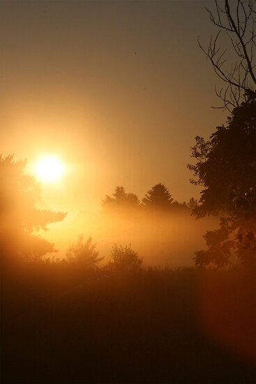 Misty Michigan Sunrise by Brenda Dow