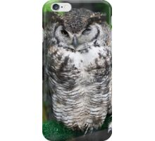 Spotted Owl in a tree iPhone Case/Skin