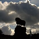 Lord of the Rams by mikebov