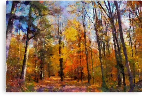 autumn forest by bogfl