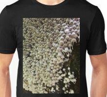 A Multitude of Mycena Toadstools, Minnamurra, Australia. Unisex T-Shirt