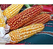 Corn over the table Photographic Print