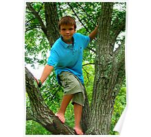 kid up a tree! Poster