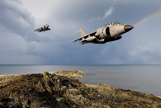 Sea Harriers over the Falklands by Gary Eason + Flight Artworks