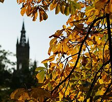 University Autumn, Glasgow by Alan Stuart