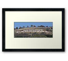 Mount Panorama Framed Print