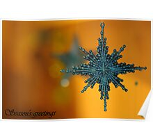 Season's Greetings ~ Poster