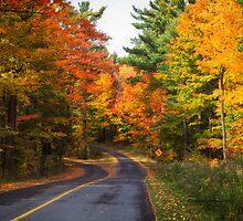 Autumn Colours 5 - MacKenzie-King Estate by Yannik Hay