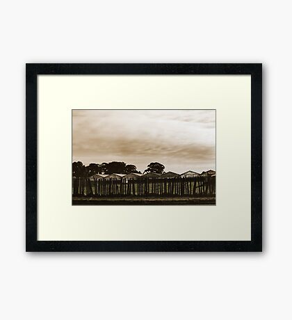 Dull and Brown Framed Print