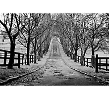 Mysterious Road, winter trees Photographic Print