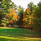 Autumn Colours 7 - MacKenzie-King Estate by Yannik Hay