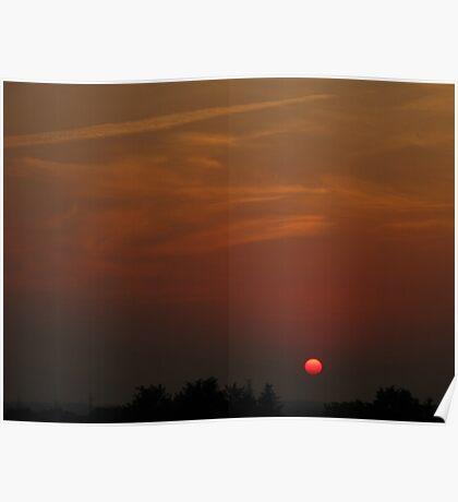 Sun hammock Poster