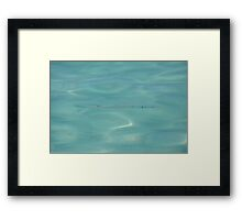 Like Fish in Water Framed Print