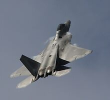 F-22 Raptor by fototaker
