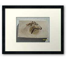 Mustang riding the wind Framed Print