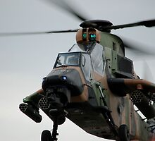 Tiger Attack Helicopter  by Craig Stronner