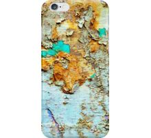 Decay in the woods iPhone Case/Skin