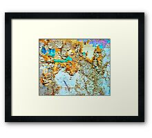 Decay in the woods Framed Print