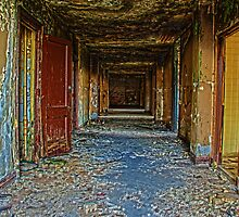 Detroit Brewster Projects Hallway HDR by alexela