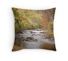 Current Conditions Throw Pillow