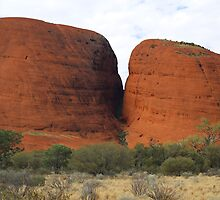 The Olgas - Up Close by kcy011