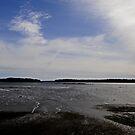 Tide out by lumiwa