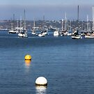 Buoys On the Bay by heatherfriedman