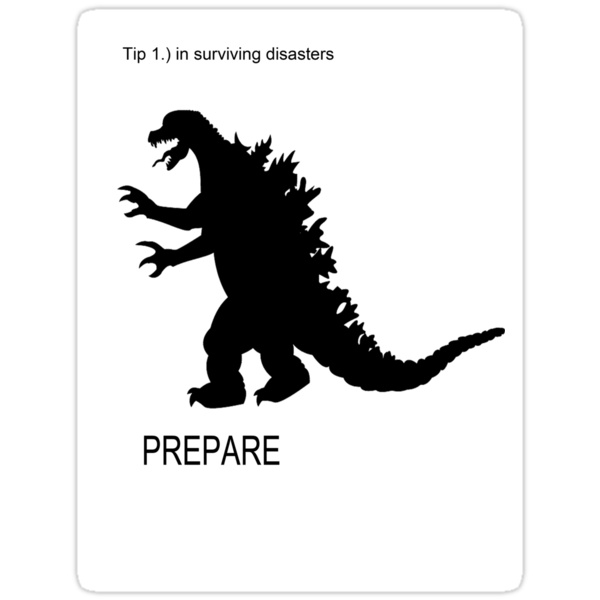 TIPS FOR SURVIVING DISASTERS by TomkinZZzz