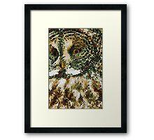 The Glaucus Owl Framed Print