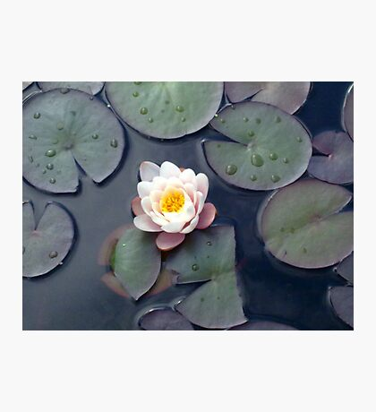 images for meditation Photographic Print