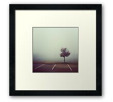 Misty Tree Framed Print