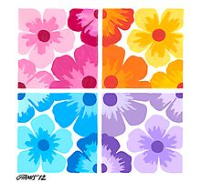 SMOOTH PAINTED FLOWERS Photographic Print