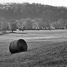 Hay Bale by Leon Heyns