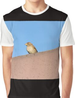 bird on roof Graphic T-Shirt