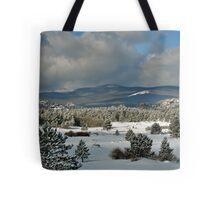 Snowy Scene Tote Bag