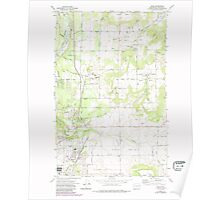 USGS Topo Map Washington State WA Mead 242269 1973 24000 Poster