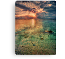 Starfish sunset Canvas Print