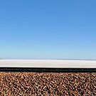 Journey to Lake Eyre #04 by Helen Eaton