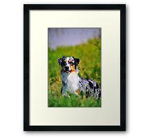 Gracie Framed Print