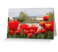 Red tulips by the lake Greeting Card