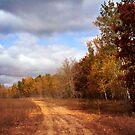 Autumn Trail by KBritt