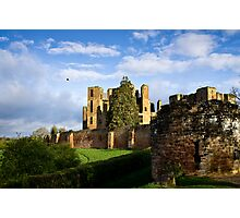 The Rook of Kenilworth Castle - Britain Photographic Print