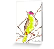 Birds in INK~ Australasian Figbird Greeting Card