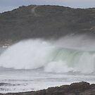 waves - at Granville Harbour   #429 by gaylene