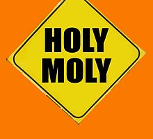 HOLY MOLY by DAdeSimone