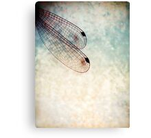 wings of dragonfly Canvas Print