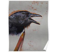 Raven Sketch Poster