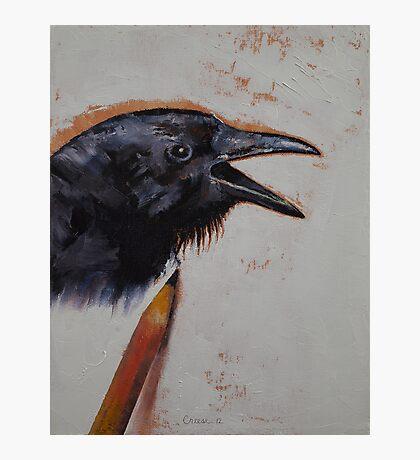 Raven Sketch Photographic Print