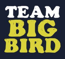 Team Big Bird by perilpress