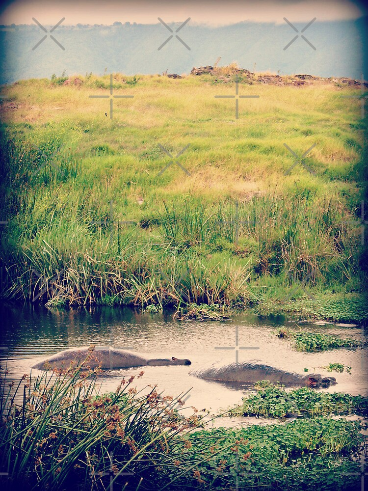 Lurking Lumps ( Hippos Under Water ) by emiliewho